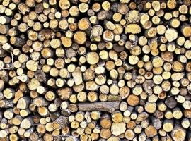 prodaja-drv